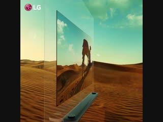 LG_OLED_TV_14.mp4