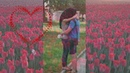 Избранница. Поет Ярослав Сумишевский. Автор Людмила Белкова ,ютуб