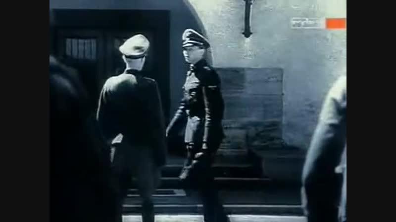 Die Waffen SS - Hitlers schwarzer Orden