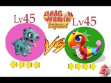 D_CANDY vs D_ZOMBIE (LV 45 - LV 45) WHO'S BETTER! - DRAGON MANIA LEGENDS #1100 HD