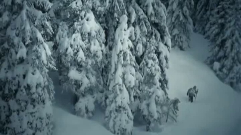 Автор Игорь Шмелёв.Ольга Плотникова - Падает снег