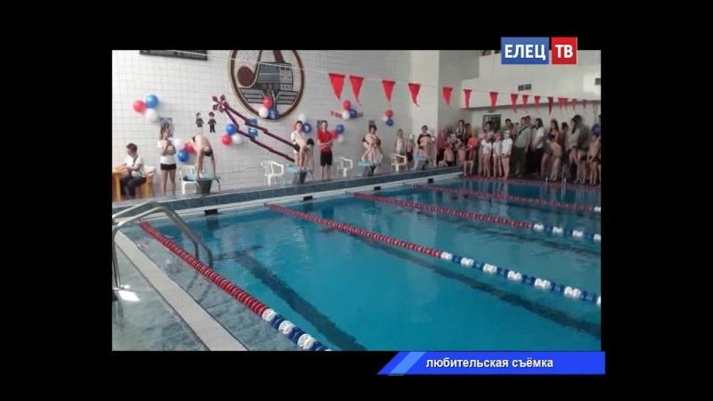 В спорткомплексе «Локомотив» прошли соревнования по плаванию среди детейЗдоровыйрегионЕлец