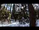 По лесу глубокий снег 20 03 2018