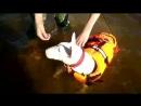 Даша - плавающий жучек