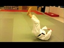 Aikido Ukemi Clinic 3 - back-break fall (koho ukemi)