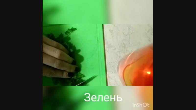 VID_55920108_080318_845.mp4
