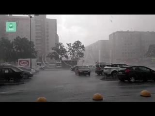Шторм внезапно обрушился на юг Петербурга: опубликовано видео