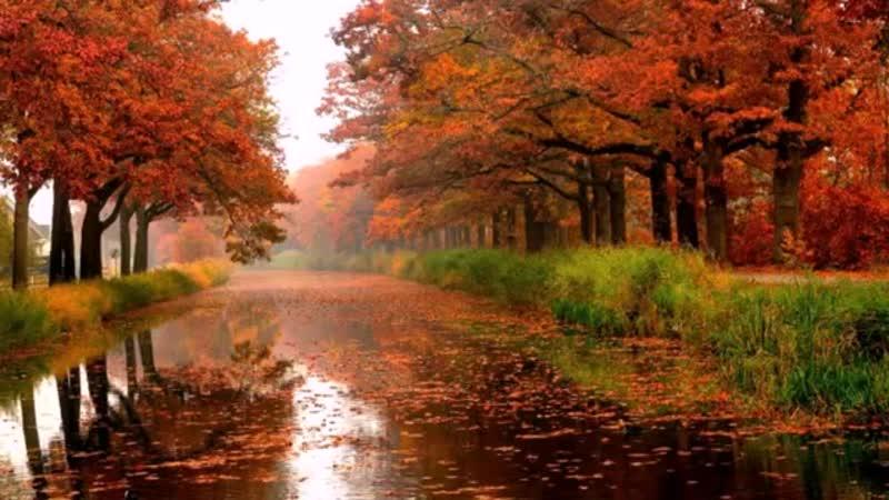John_Aurora_Autumn_Rain_Artur_Venis_Remix.mp4