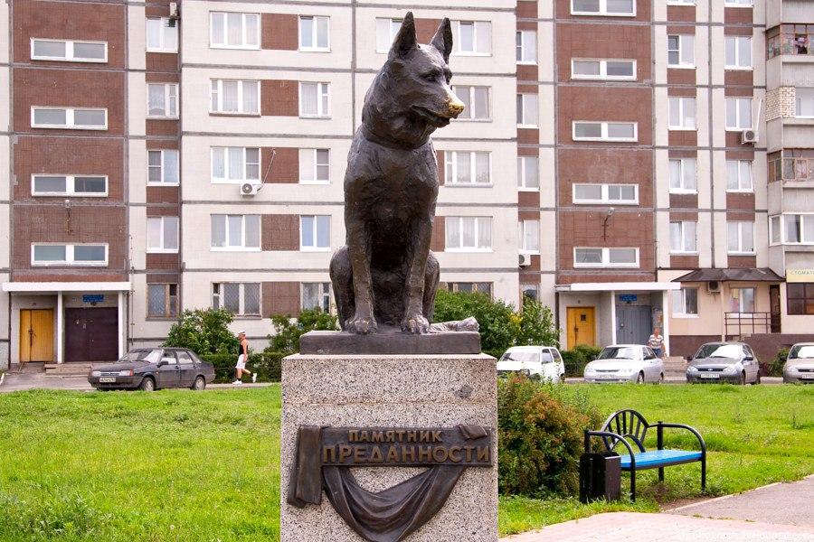 QWJRbTQ0wto Тольятти достопримечательности и история города.