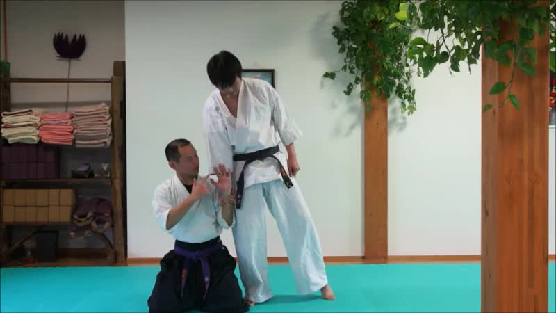 Ju Jutsu Хакко рю