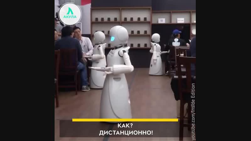 Роботы-официанты управляются инвалидами | АКУЛА