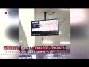 В Японии произошло землетрясение магнитудой 6,1/гнездо пересмешника