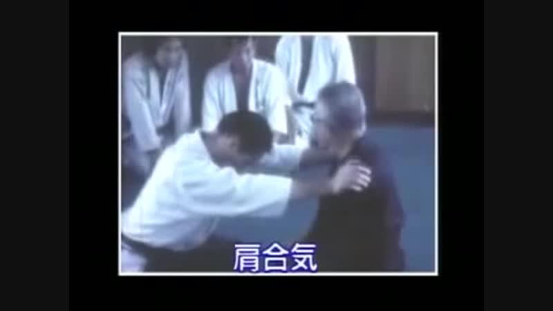 Horikawa Kodo (Daito ryu aiki jujutsu)