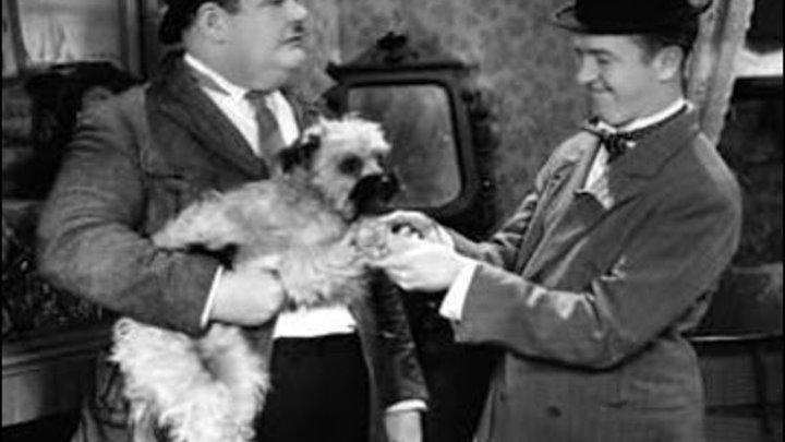 31 Laughing Gravy Stan Laurel, Oliver Hardy, Harry Bernard