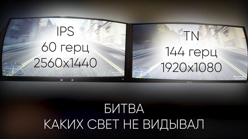 Сравнение двух мониторов IPS vs TN   60 герц VS 144 герца   Александр Гамлет