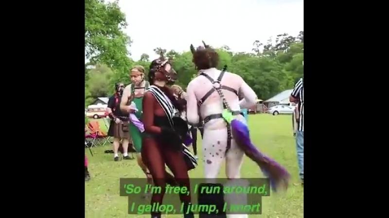 Достойное пони-развлечение