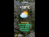 ТН_погода
