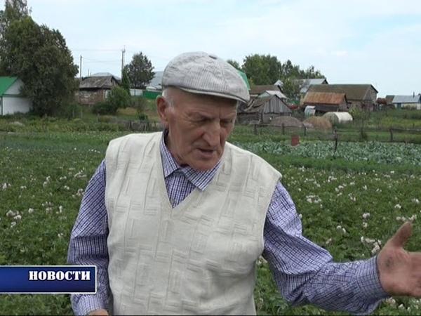 Анас Байбурин, Арсланово