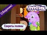 Секреты поляны ☝️ Лунтик 👀 Сборник мультфильмов 2018