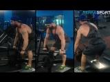 Базовая тренировка мышц спины