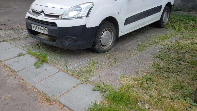 Первая эко-парковка в Архангельске.