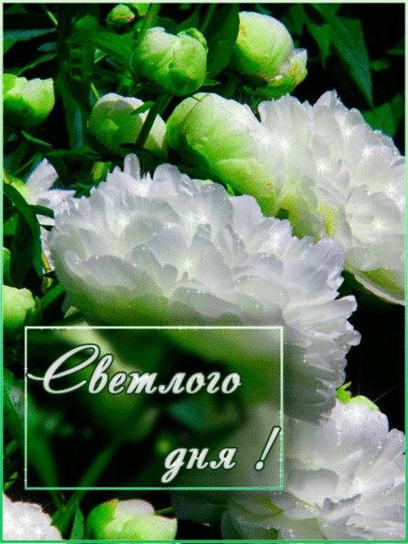 Доброго утра!!!Светлого дня!!!