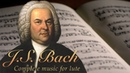 J.S. Bach: Complete Lute Music