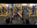 Аманда Лоуренс - тяга 220 кг