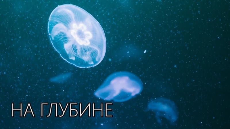 DAWG - На глубине (Криповая история)