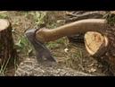 Вырубка деревьев на Академика Павлова 46 50 в Москве LIVE 25 09 18