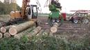 Luc Veldhuijzen Promo video bomen rooien
