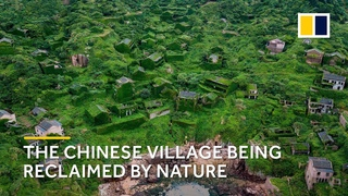 The Chinese ghost village shrouded in greenery