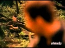 Farscape - If You Love Someone - John/Aeryn