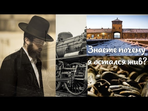 Знаете почему я сегодня жив Рассказ еврея, выжившего в Освенциме (Аушвице)
