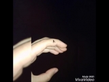 XiaoYing_Video_1537032675003.mp4