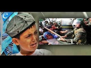 Митинг в Турции в поддержку мусульман которая находится в Китае уйгурского население