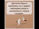 Doc71158344_465353922.mp4