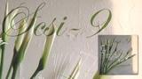 SCSI 9 - Senorita Tristeza 'The Line Of Nine' Album