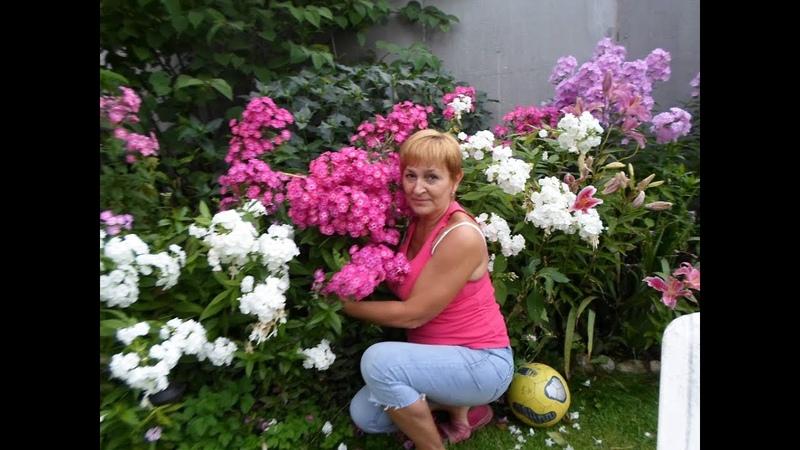 Рита Нестерова-лучший цветовод года. Цветы и вдохновение.
