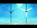 2008 Самовозобновляемые источники электроэнергии