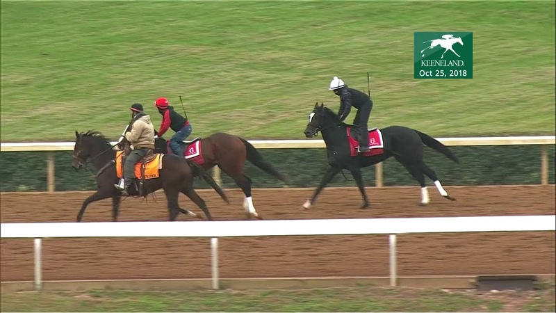 War of Will and Strike Silver work at Keeneland Oct. 25