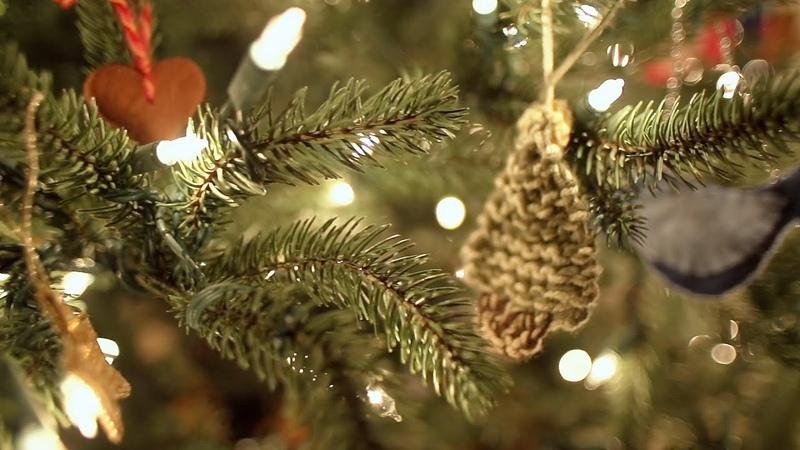 Beachfront B-Roll: Christmas Tree Slow Pan (Free to Use HD Stock Video Footage)