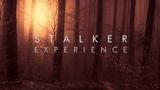 Red Forest Dark Ambient Mix