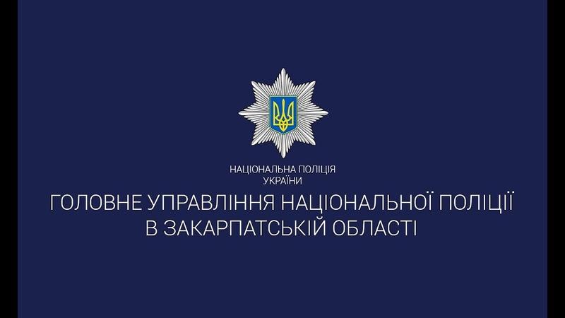 Поліція Закарпаття виявила на Мукачівщині наркоплантацію та вилучила 549 стебел коноплі