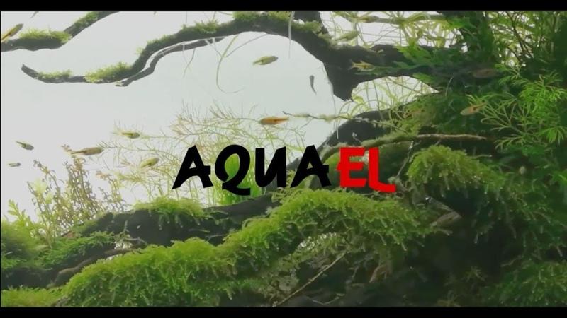 FASCINATING TECHNOLOGY AQUAEL Promo video