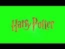 MEME Harry Potter Chroma Key.mp4
