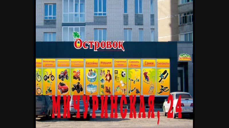 г.Тамбов, ул. Мичуринская , д. 24 ,магазин Островок