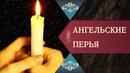 АНГЕЛЬСКИЕ ПЕРЬЯ. Разсказ бывшего протестанта, принявшего отрока Вячеслава и Православие