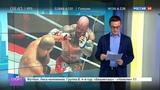 Новости на Россия 24 Джефф Монсон спел за рулем хит Виктора Цоя