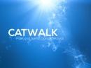 Полотна Catwalk Dance Fest IX pole dance aerial 30 04 18